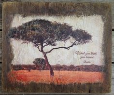 """"""" What you think you become"""" - Buddha.  Inspirational art - Photo from Africa with acrylic paint on wood.  by dbgallerie on Etsy."""