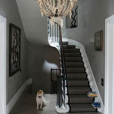 Modern hallway pictures and photos for your next decorating project. Find inspiration from of beautiful living room images Townhouse Interior, Georgian Townhouse, London Townhouse, Georgian Homes, Grey Hallway, Modern Hallway, Modern Georgian, Hallway Pictures, Polished Plaster