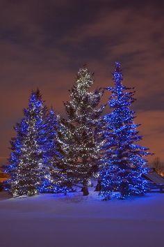 Christmas in Calgary, Canada