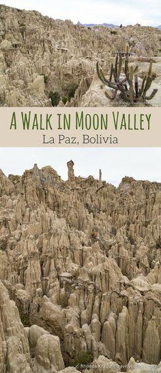 travelyesplease.com   A Walk in Moon Valley- La Paz, Bolivia (Blog Post)   South America