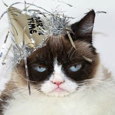 Grumpy Cat New Year's Eve