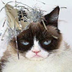 Grumpy Cat New Year's Eve