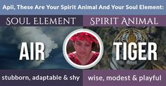 What Is Your Soul Element And Spirit Animal?