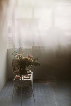 Journal —Vervain Flowers
