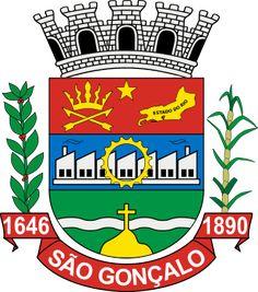 São Gonçalo Coat of Army - Brazil