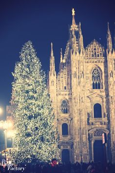 Christmas in Italy... Would die to be proposed to here