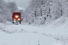 Winter - Locomotive, Ontario, Canada by mike #Lockwood - #photo #ontario #canada #snow #train #winter #followart ___