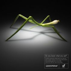 """Do you know what you eat?"" Greenpeace Campaign on GMO, by BBDO"