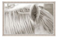 Focusing on White Horse I