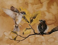 k. jokel #art #illustration #watercolor #bird #sparrow