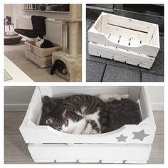 DIY Kattenmandje - houten aardappelkratje - schuurmachine & zaag - verf - sterren sjabloon - twee zachte kussentjes