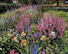 Susan Rios - 'Garden Memories'