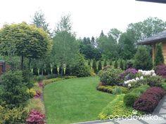 Czas na ogród - strona 20 - Forum ogrodnicze - Ogrodowisko