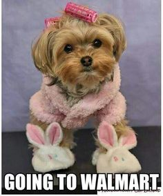to do my Easter shopping.,