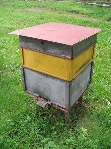 A complete (and easy to understand) course on how to raise bees for honey.