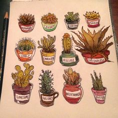 Colored my cacti with social issues. Now they have an even stronger personality ✨