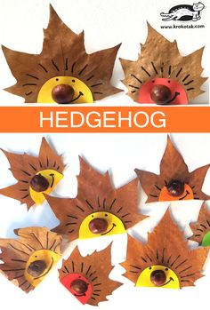 Craft Idea Autumnal chestnut hedgehog- Bastelidee Herbstlicher Kastanien Igel Simple and easy crafting idea with natural material. Make a hedgehog out of chestnut and autumn leaves. Well suited for children in kindergarten and elementary school. Autumn Crafts, Fall Crafts For Kids, Nature Crafts, Toddler Crafts, Projects For Kids, Kids Crafts, Diy For Kids, Harvest Crafts, Summer Crafts