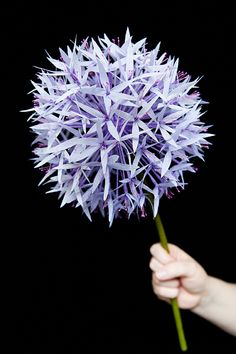 How to make DIY paper allium flower ball at Design Sponge