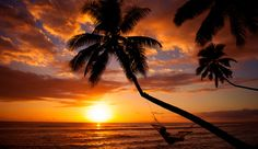 ahh-- hammock, palm tree, sunset, ocean/sea waves lapping at the shore--ultimate relaxation