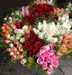 Biggest bouquet ever, lol. All Flowers, My Flower, Pretty Flowers, Flower Power, Bouquet Flowers, Amazing Flowers, Bouquets, Beautiful Roses, Planting Flowers