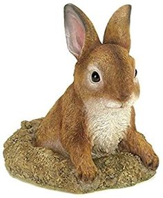 Home Locomotion Curious Bunny Garden Decor Outdoor Statues, Garden Statues, Garden Sculpture, Peek A Poo, Rabbit Garden, Rabbit Art, Outdoor Garden Decor, Outdoor Decorations, Garden Decorations