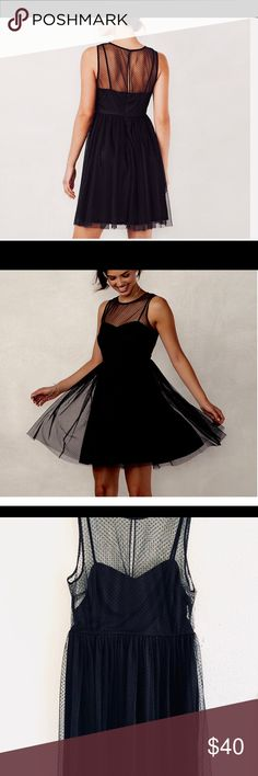 NWT Flocked Tulle Fit &Flare Dress PRODUCT FEATURES 	•	Flocked tulle overlay 	•	Illusion yoke 	•	Crewneck 	•	Sleeveless 	•	Lined LC Lauren Conrad Dresses Mini