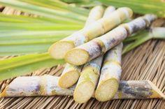 Saiba os benefícios ao beber sumo de cana de açúcar depois ou antes dos treinos diários https://angorussia.com/lifestyle/saude/saiba-os-beneficios-ao-beber-sumo-de-cana-de-acucar-depois-ou-antes-dos-treinos-diarios/