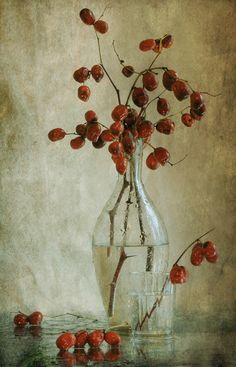 #still #life #photography • photo: этюд с Унаби-3 | photographer: Pretty | WWW.PHOTODOM.COM