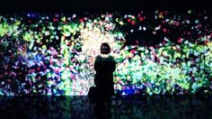 Flowers and People, Cannot be Controlled but Live Together par teamLab