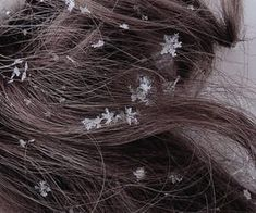 284 images about House Stark - Winter Is Coming💎 on We Heart It Narnia, House Mormont, Storm Kings Thunder, House Stark, Princess Aesthetic, Throne Of Glass, Winter Is Coming, Long Hair Styles, Pretty