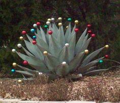 One of my neighbors does this every year!  So fun!  DecRenew Interiors Blog: Texas Christmas