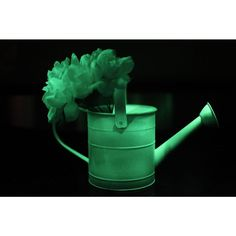 Rust-Oleum Specialty 10-oz. Glow in the Dark Spray-267026 at The Home Depot Paint your pots in your yard and they will glow in the dark!