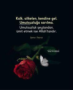 Ibn Arabi, Allah, Pray, Advice, Instagram, Tips
