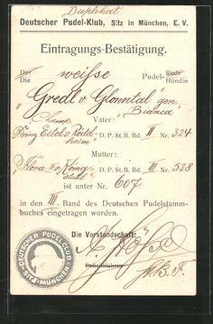 old postcard: AK München, Deutscher Pudel-Klub, Eintragungs-Bestätigung
