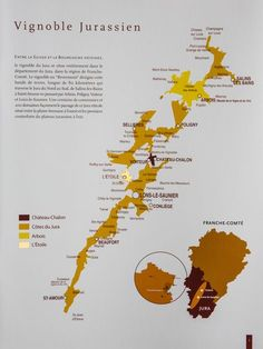 French Wine Regions, Champagne, Virginia Wineries, Non Alcoholic Drinks, Cocktails, Wine Cheese, Wine Fridge, Wine And Spirits, Wine Tasting