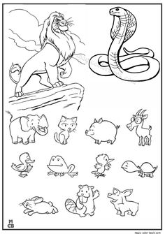 Animal Coloring book pages lion snake