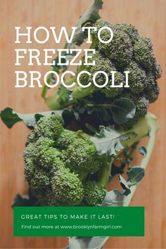 Simple steps to freeze broccoli to use year round in dishes. Learn how to store your broccoli for long-term use to save money when it's out of season. Easy Broccoli Recipes, Broccoli Slaw, Frozen Broccoli, Cucumber Recipes, Fresh Broccoli, Broccoli Casserole, Broccoli Florets, Broccoli Cheddar, Healthy Recipes