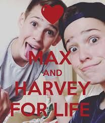 Image result for max and harvey