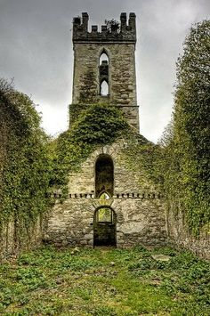 Ruins of Old Castlemacadam Church outside Avoca - County Wicklow Ireland