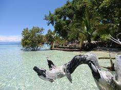 Isla Colon, Panama #PanamaTips - #PANAMA - https://www.facebook.com/TravelPanamaTips