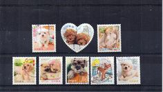 8 cute dog puppyJapanese stamps used Japan postage. Baby animals small different stamps Asian, crafts art collect, decoupage. Scan enlarged.
