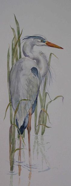 egret watercolor - w