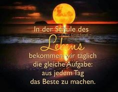Spruch.des Tages German Language, Anger Management, Spirit, Neon Signs, Humor, Motivation, Sayings, Words, Quotes