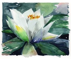 Jake Marshall watercolor. Water lily.