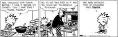 Calvin and Hobbes Comic Strip, January 29, 2013 on GoComics.com