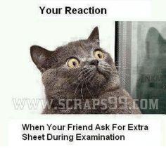 Hasil gambar untuk examination meme