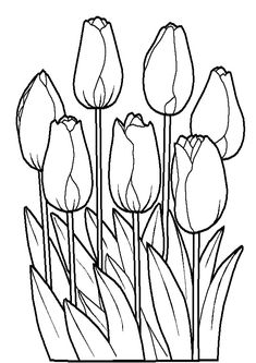 Bunch of Tulips Flower Coloring Page