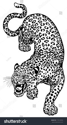 Angry leopard black and white tattoo illustration tattoo Dope Tattoos, Pretty Tattoos, Leg Tattoos, Small Tattoos, Tattoos For Guys, Jaguar Tattoo, Tiger Tattoo, Leopard Tattoos, Animal Tattoos
