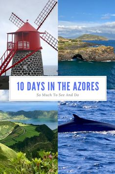 So many things to experience on 10 days in the Azores - great viewpoints, volcanic settings, wine and food, whale watching & street art too!