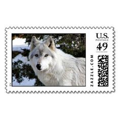 >>>Are you looking for          wolf stamp           wolf stamp Yes I can say you are on right site we just collected best shopping store that haveThis Deals          wolf stamp today easy to Shops & Purchase Online - transferred directly secure and trusted checkout...Cleck Hot Deals >>> http://www.zazzle.com/wolf_stamp-172154423589836262?rf=238627982471231924&zbar=1&tc=terrest